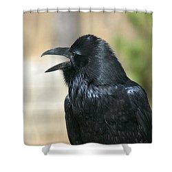Meet My Friend   Where Did He Go Shower Curtain