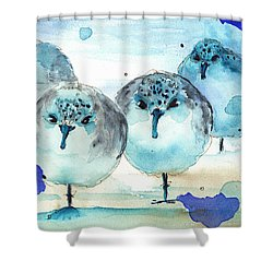 Meet The Sanderlings Shower Curtain