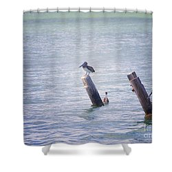Shower Curtain featuring the photograph Meeting Place by Erika Weber