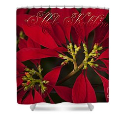 Mele Kalikimaka - Poinsettia  - Euphorbia Pulcherrima Shower Curtain by Sharon Mau