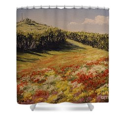 Shower Curtain featuring the painting Melkow Trail  by Stanza Widen
