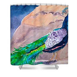 Mellow Peacock Shower Curtain by Beverley Harper Tinsley