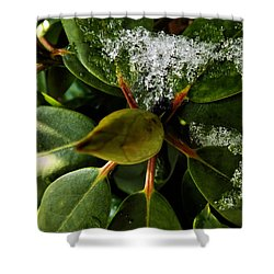 Shower Curtain featuring the photograph Melting Crystals by Robyn King