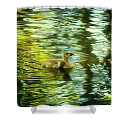 Memories Of Spring Shower Curtain by Melanie Lankford Photography