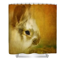 Memories Of Watership Down Shower Curtain by Lois Bryan