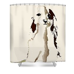 Mercedes  - Our Cavalier King Charles Spaniel  No. 9 Shower Curtain