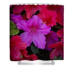Merging Azaleas 2 Shower Curtain by Penny Lisowski