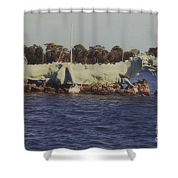Merritt Island River Dragon Shower Curtain