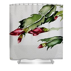 Merry Christmas Cactus 2013 Shower Curtain