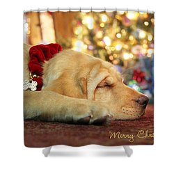 Merry Christmas From Lily Shower Curtain by Lori Deiter