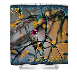 Merry Christmas Hummer Shower Curtain