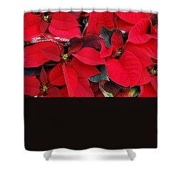 Merry Christmas And Hapy New Year  Shower Curtain