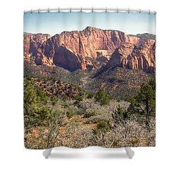 Mesa In Kolob Shower Curtain by Robert Bales