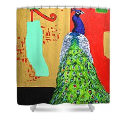 Messages Shower Curtain by Ana Maria Edulescu
