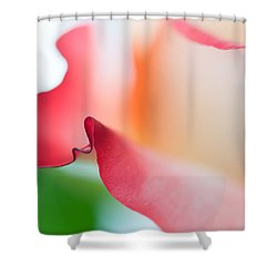 Messenger From Another Realm II. Ethereal Rose Shower Curtain by Jenny Rainbow