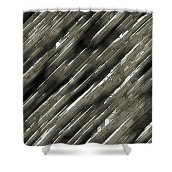 Metal Shower Curtain by Susan Schroeder