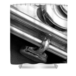 Shower Curtain featuring the photograph Metallic  by Lisa Phillips