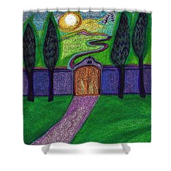 Metaphor Door By Jrr Shower Curtain by First Star Art