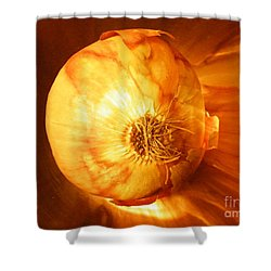 Meteoric Onion Shower Curtain by Brian Boyle