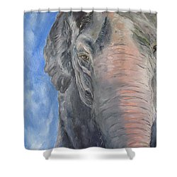 The Elder, Methai An Elephant Shower Curtain