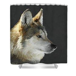 Mexican Grey Wolf Portrait Freehand Shower Curtain by Ernie Echols