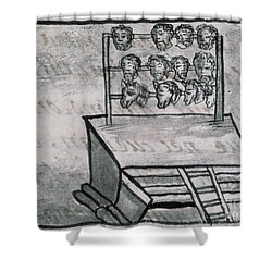 Mexico - Skull Rack Shower Curtain by Granger