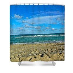 Miami Beach Shower Curtain by Joan Reese