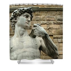 Michelangelo's David 1 Shower Curtain by Ellen Henneke