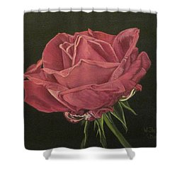 Mid Bloom Shower Curtain by Wendy Shoults