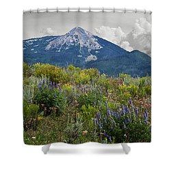 Mid Summer Morning Shower Curtain