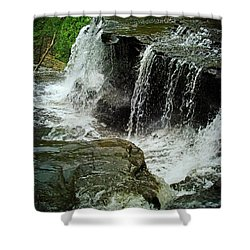Middle Johnson Falls Shower Curtain by Lianne Schneider