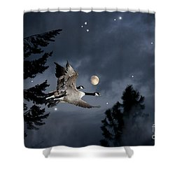 Midnight Flight Shower Curtain