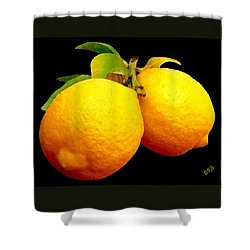 Midnight Lemons Shower Curtain by Ben and Raisa Gertsberg