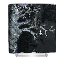 Shower Curtain featuring the drawing Midnight Owl by Teresa White