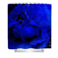 Midnight Rose Shower Curtain by Sami Martin