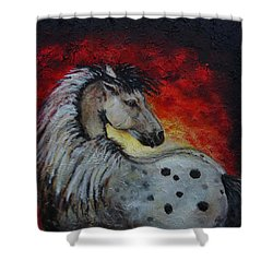 Midnight Sun Shower Curtain by The Art With A Heart By Charlotte Phillips