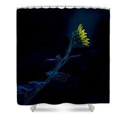 Midnight Sunflower Shower Curtain