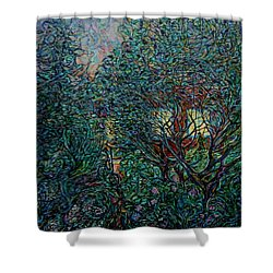 Midsummer Night Shower Curtain