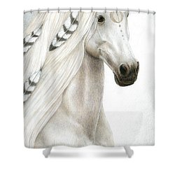 Midwinter Moon Shower Curtain