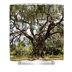 Shower Curtain featuring the photograph Mighty Oak by Beth Vincent