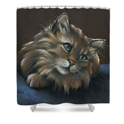 Shower Curtain featuring the drawing Miko by Cynthia House