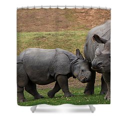 Mili And Sundari  Shower Curtain by Steve LLamb