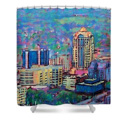 Mill Mountain View Shower Curtain