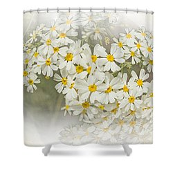 Millicent Shower Curtain