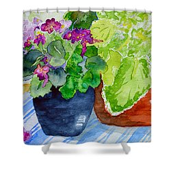 Mimi's Violets Shower Curtain by Beverley Harper Tinsley