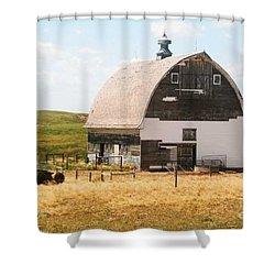 Minden Nebraska Old Farm And Barn Shower Curtain