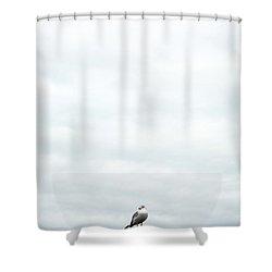 Mine Shower Curtain
