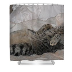 Ming With Slight Attitude Shower Curtain