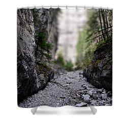 Mini Canyon Shower Curtain