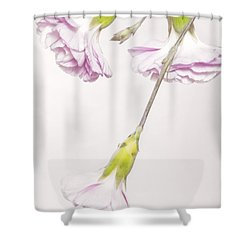 Mini Mum Shower Curtain